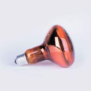 Лампа GE 60A1/CL/E27 A50 (Б 60Вт)