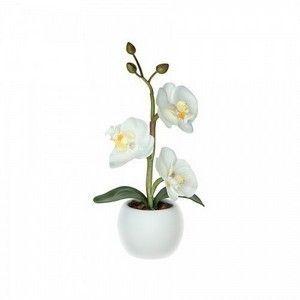 Светильник СТАРТ LED Орхидея_1_мал (белый)