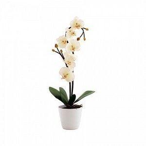 Светильник СТАРТ LED Орхидея (белый)